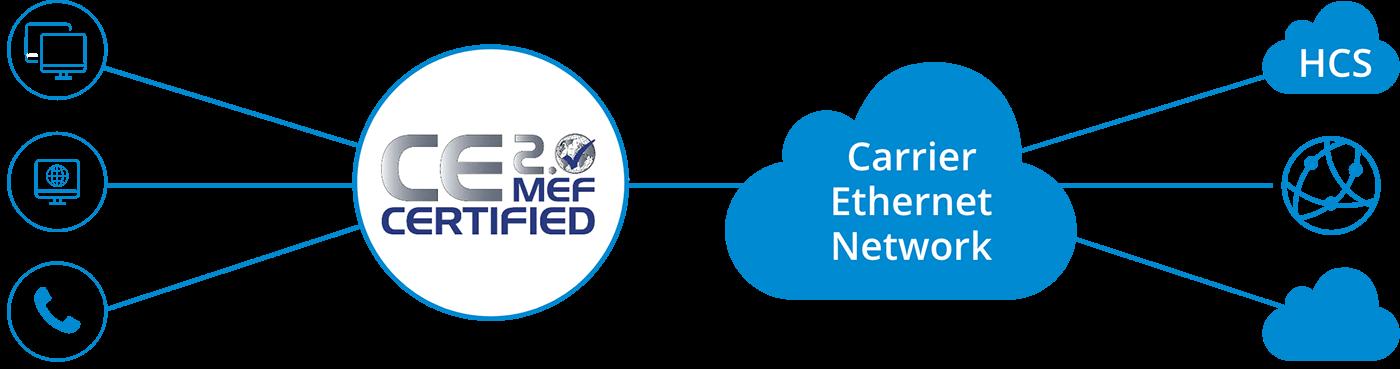 MetroFibre's carrier ethernet network